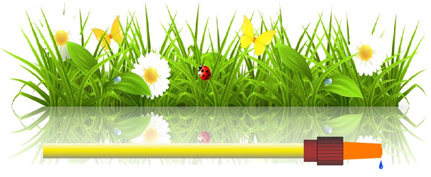 Gartenprofi-Bestensee